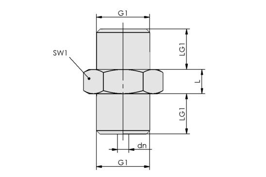 SW 40 G1/4-AG